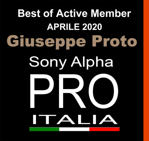 Best of Active Member Aprile 2020, Giuseppe Proto